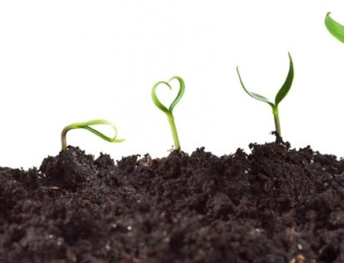 4 Reasons Your Leads & Sales Aren't Growing Like You'd Wish